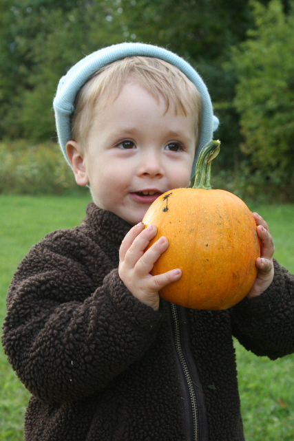 Simon_pumpkin_2